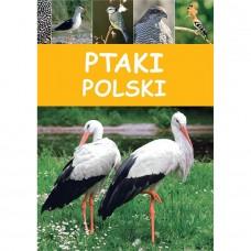 Ptaki Polski/SBM