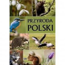 Przyroda Polski złocone litery